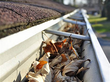 perth gutters - gutter cleaning
