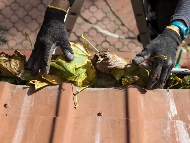 Gutter cleaning - perthgutters